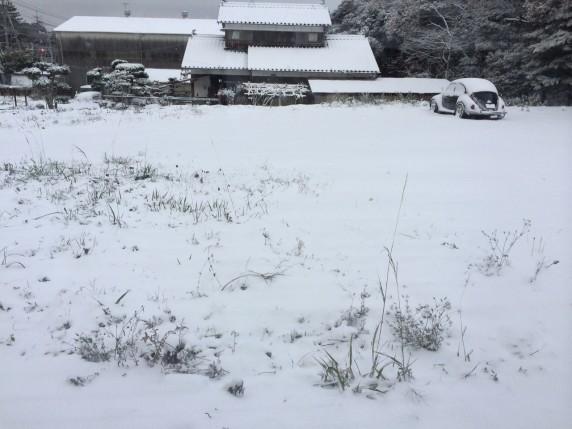 雪② (1280x960)